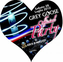 Party Grey Goose.jpg